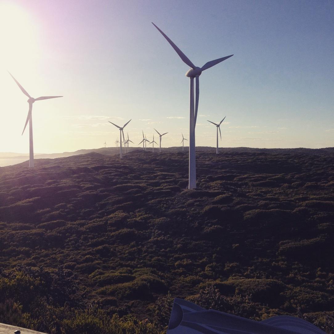albany wind farm